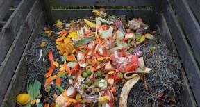 Από αρχές του 2020 η ανακύκλωση οργανικών αποβλήτων